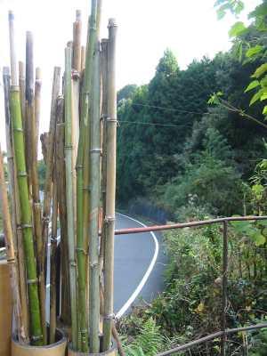 熊野本宮大社、道路